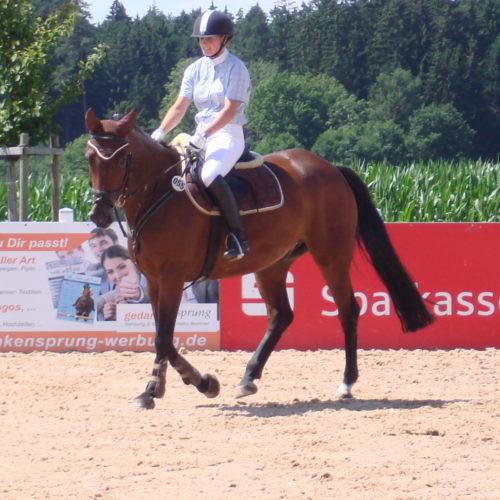 Reitturnier_Jagstzell_2010_ 01.08.2010 13-20-18