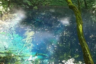 画像:青池