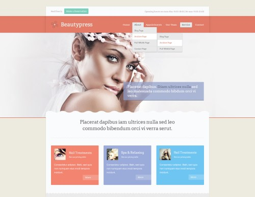 BeautyPress - Responsive WordPress Theme