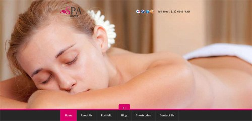 SPA SALON - Creative WordPress CMS Theme