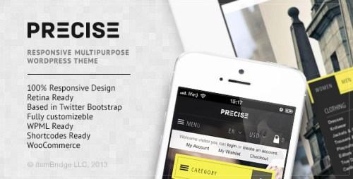 Precise - Multipurpose Responsive WP Theme