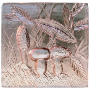 Mushrooms in glass - Jim Wasik
