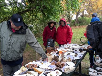 cold-and-wet-at-the-identification-table-by-richard-jacob