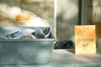 Oyster Kit Table. By Kristine Murawski