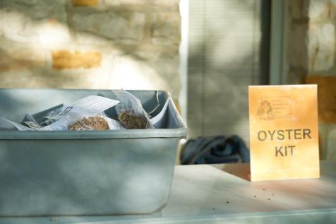Oyster Kit Table. By Kristine Murawski