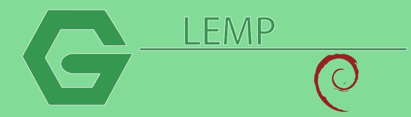 Debian 8 instalacija LEMP servisa