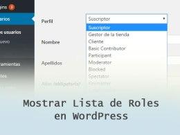 Mostrar Lista de Roles de Usuarios en WordPress