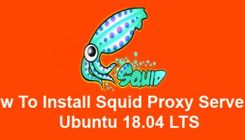 Https Squid Proxy