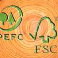 Certificación FSC y PEFC para Imprentas y Papeleras Ambientalmente Proactivas
