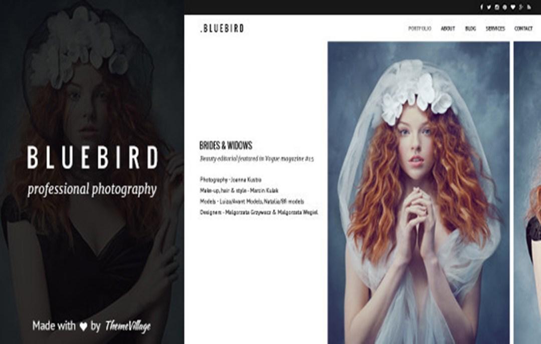 bluebird-wp