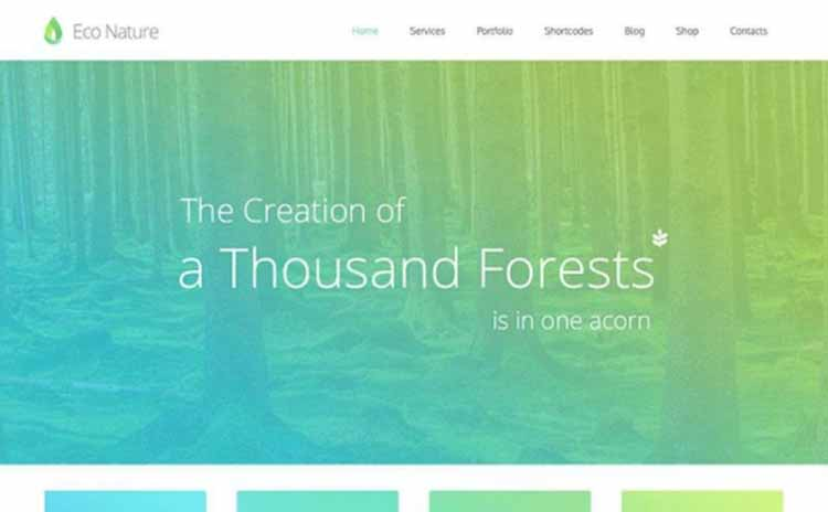 econature-nonprofit-wordpress-theme-550x340