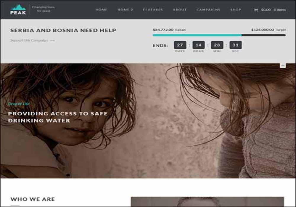 peak-charity-nonprofit-wordpress-theme-download-designrazzi