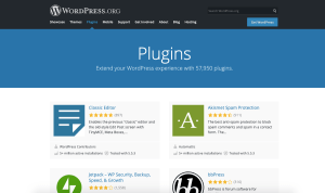 what-is-a-wordpress-plugin