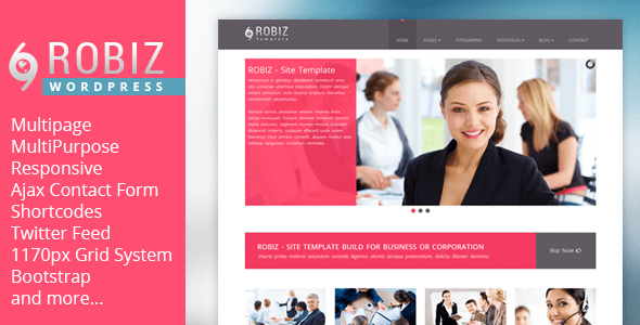 ROBIZ WordPress Theme