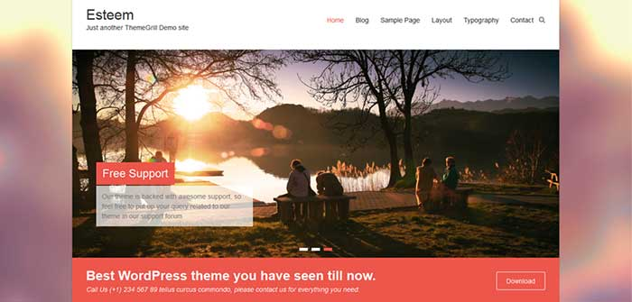 Esteem - Portfolio WordPress Theme