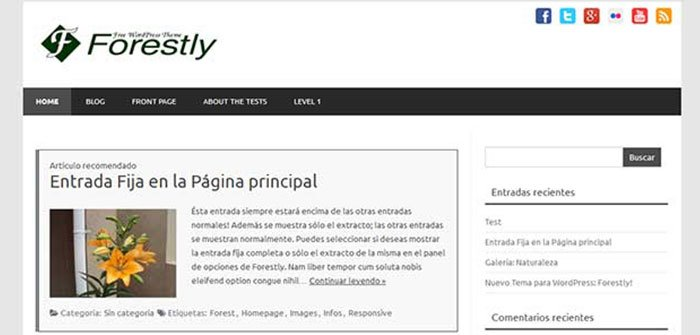 Forestly - SEO Friendly WordPress Theme