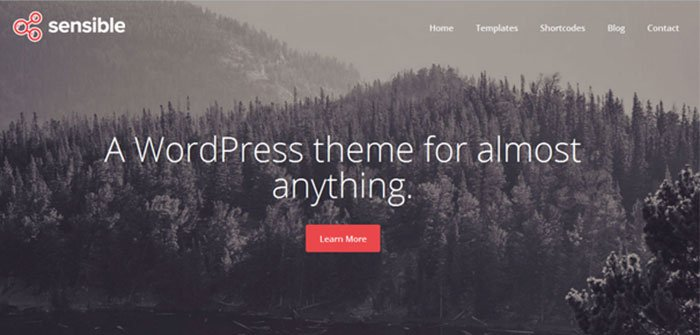 Sensible Multipurpose WordPress Theme
