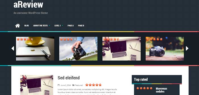 areview wordpress theme
