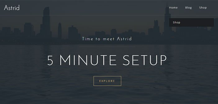 Astride - Awesome Business WordPress Theme