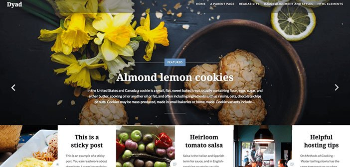 Dyad - Beautiful Photography WordPress Theme