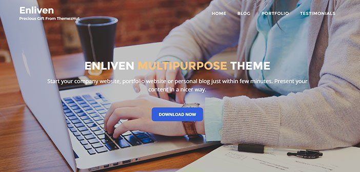 Enliven - Beautiful Multipurpose WordPress Theme