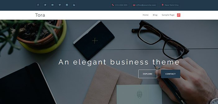 Tora - Elegant and Responsive Business Theme