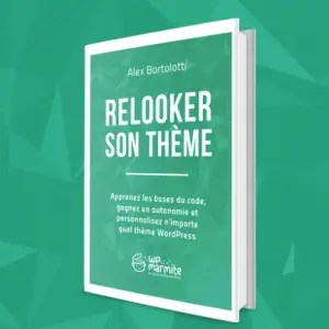 relooker-son-theme