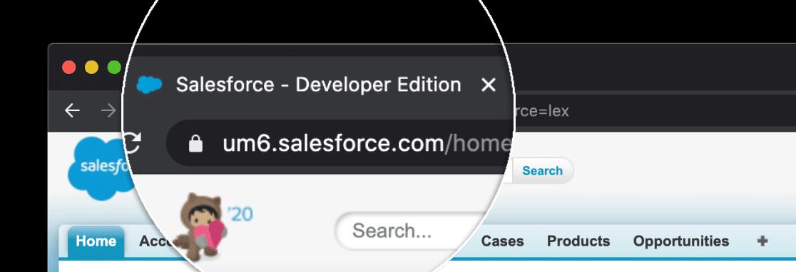 salesforce wordpress plugin