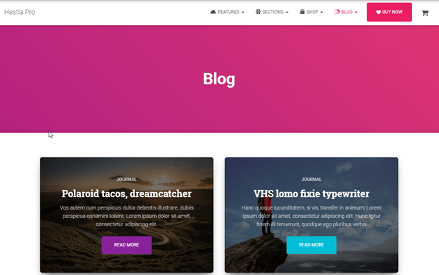 Best WordPress Themes for Bloggers You Should Know [2020] 3