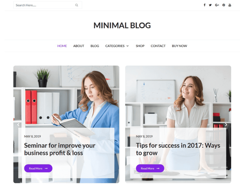 21 Best Minimalist WordPress Themes for 2020! 11