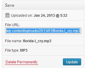 screenshot showing the mp3 audio file uploader option in wordpress