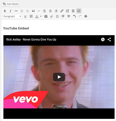 screenshot showing a preview of the YouTube video in the WordPress visual editor