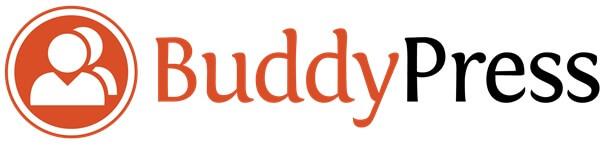 Uitleg   Wat is buddypress?