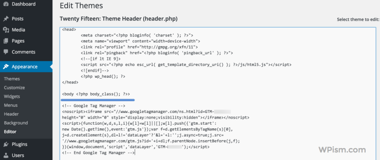 Adding Google Tag Manager to WordPress Header