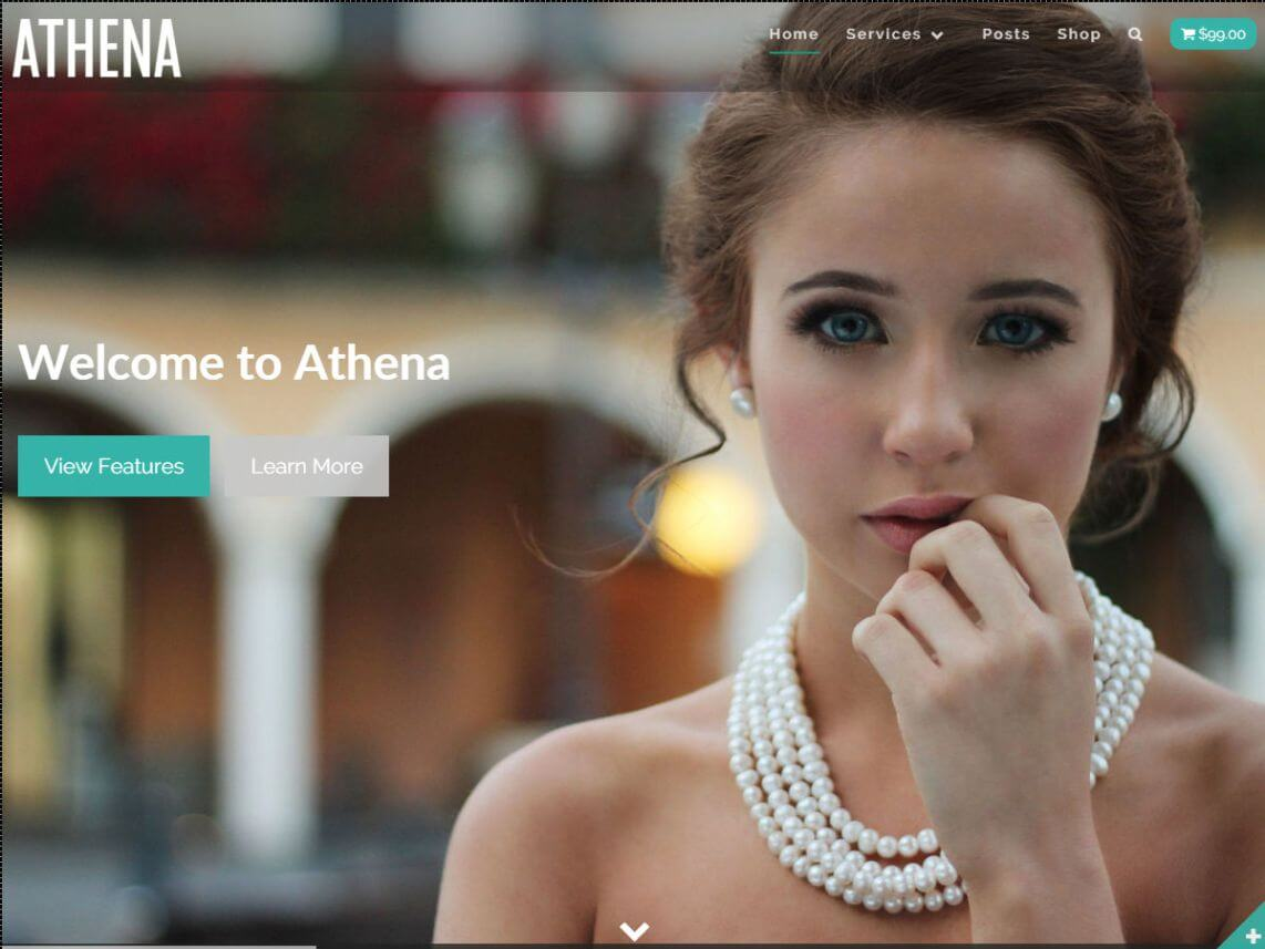Athena By smartcat WordPress Theme