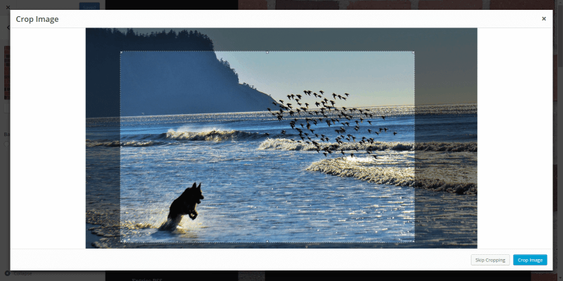 Background Image Cropper WordPress Feature