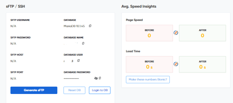 BionicWP website speed insights review