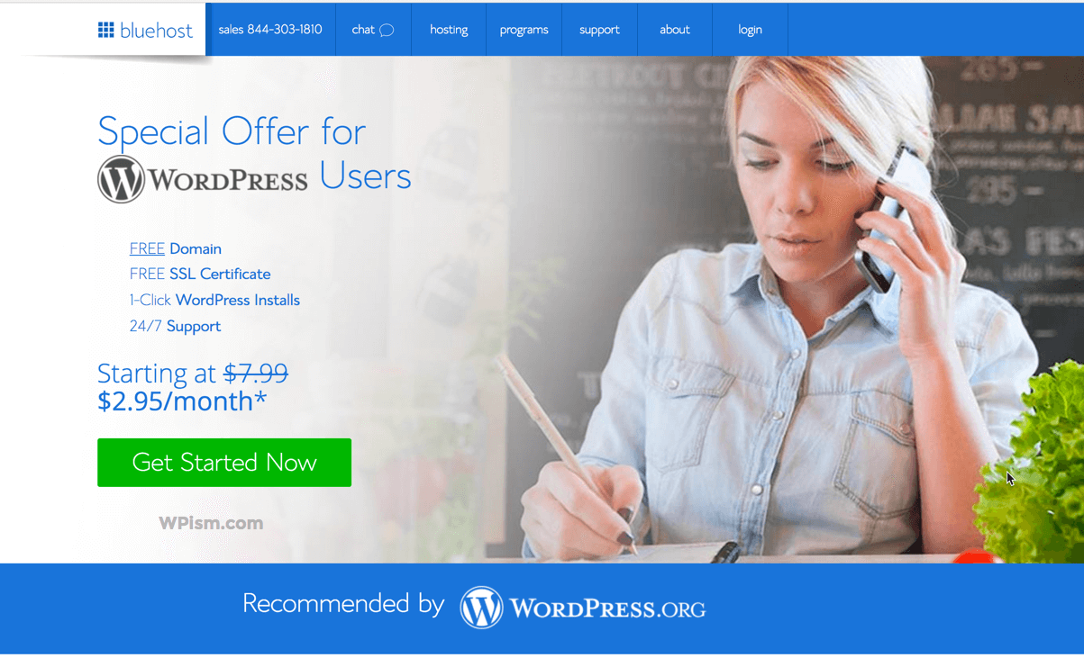Bluehost Offer How to Start a Blog WPism WordPress