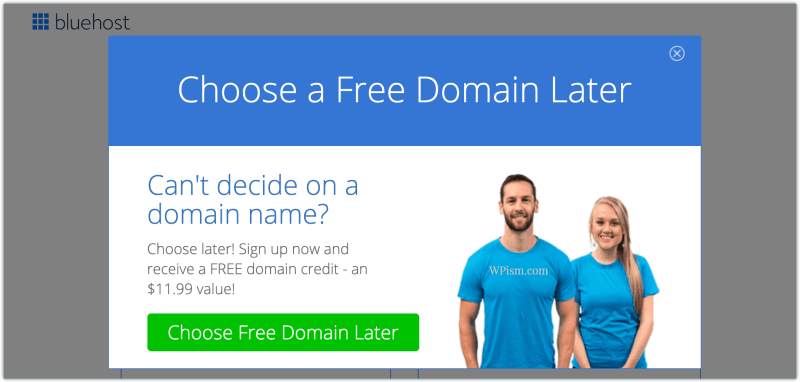 Choose Free Domain Bluehost later coupon