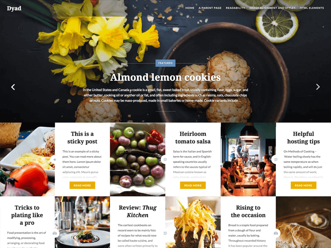 Dyad By Automattic WordPress Theme