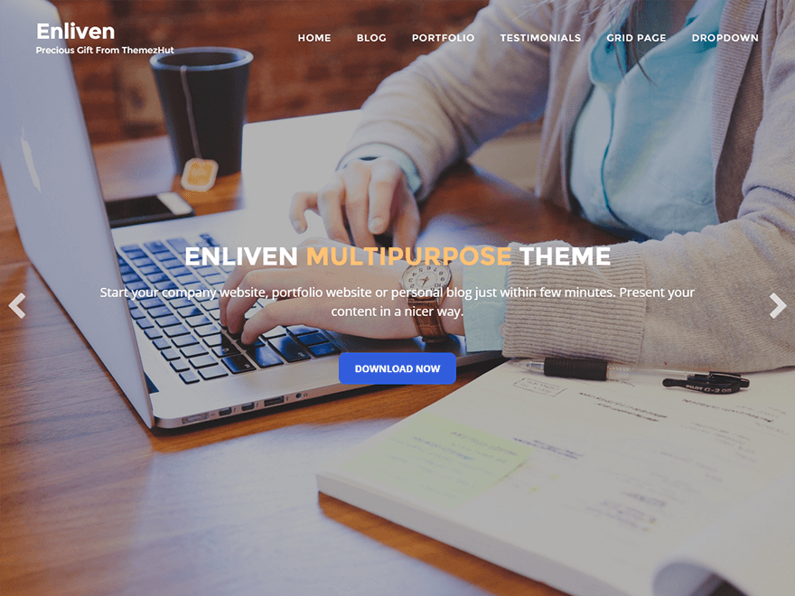 Enliven By Pubudu Ranjan Malalasekara WordPress theme