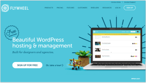 Flywheel New Year WordPress deal