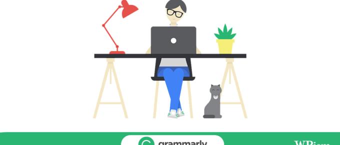 Grammarly Review WordPress