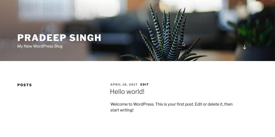 My new WordPress Blog How to Start a Blog Process