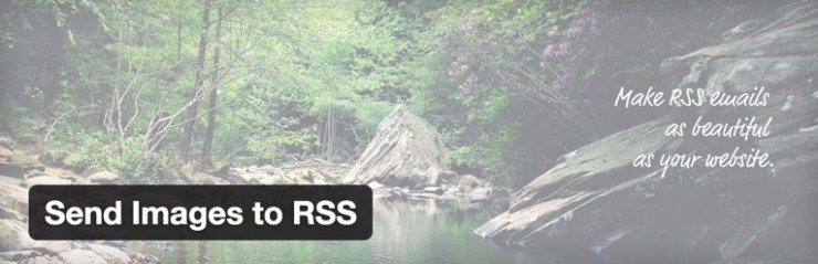 how to find your rss feed on wordpress