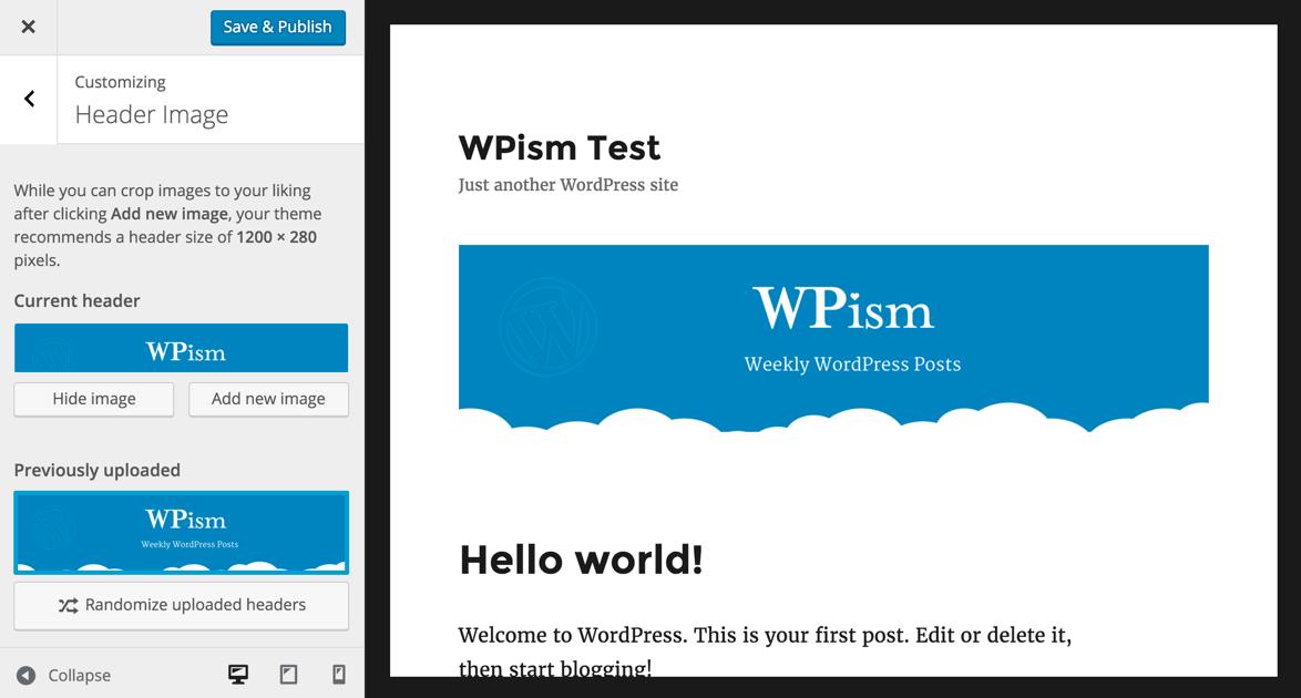 WordPress Customizer Theme Header Option