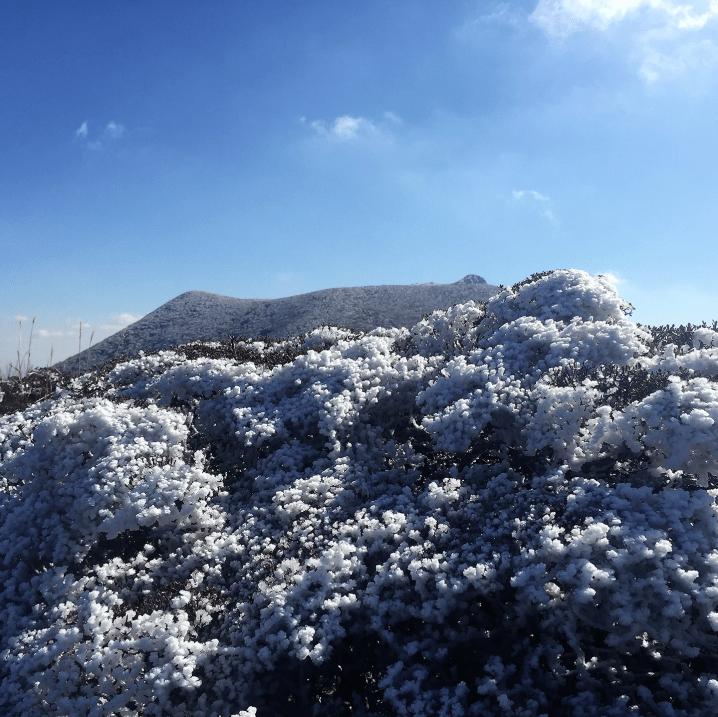 阿蘇くじゅう国立公園の四季「冬」