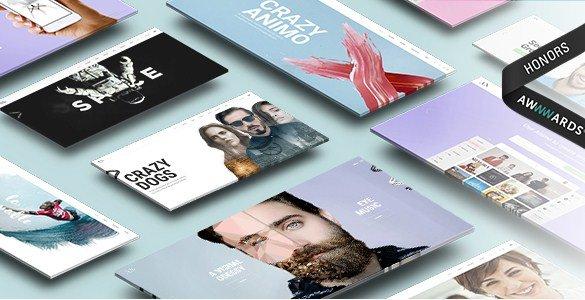 Animo - Creative & Clean Multi-Purpose WordPress Theme