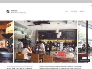 Array Themes Camera WordPress Theme