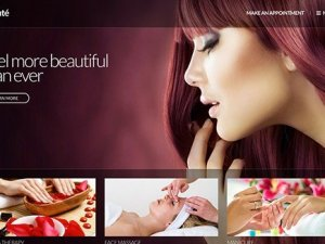 CSS Igniter Beaute WordPress Theme